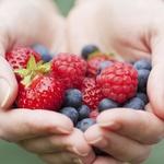 Antioksidanter